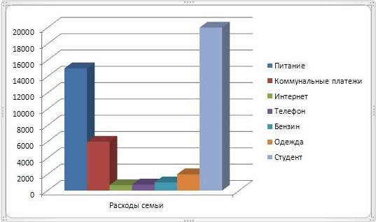 График доходов и расходов семьи